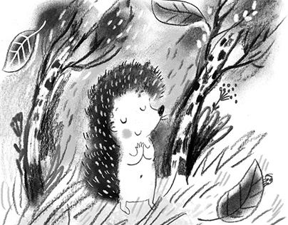 Illustrations for book about Hedgehogs - part 1