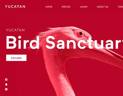 Bird Sanctuary Mockup Design