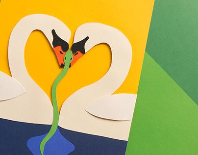 Le coeur des cygnes   Illustrations