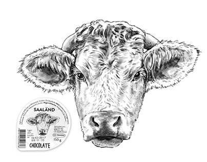 Produkt-Illustration