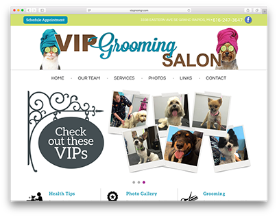 VIP Grooming Salon Website Development