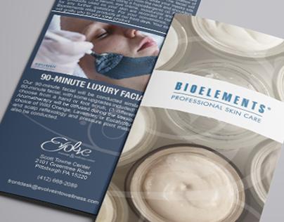 Evolve Brochure