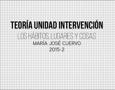 Teoría Unidad Intervención