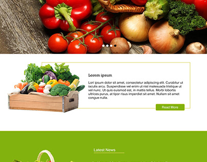 Afroland Farms Website Design