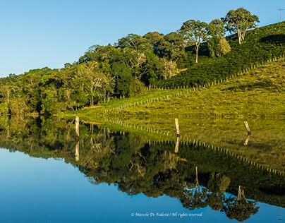 Nature Brazil