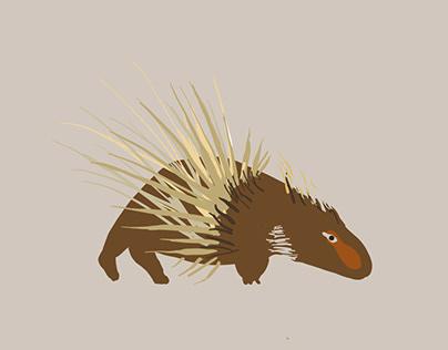 Porcupines love bark 2020 21.47.48