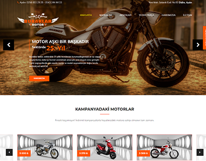 Automobile & Motorbike Web Design