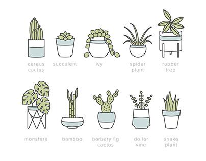 Houseplant Icons
