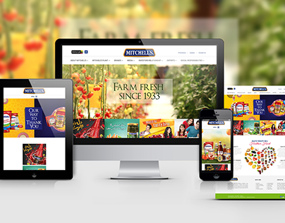 Web Design & Development - Mitchells