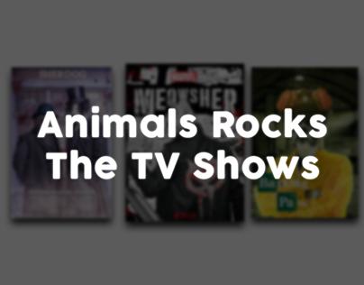 Animals Rocks The TV Shows