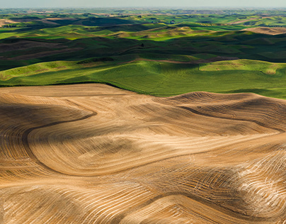 PROJECT #50 PALOUSE ABSTRACTS