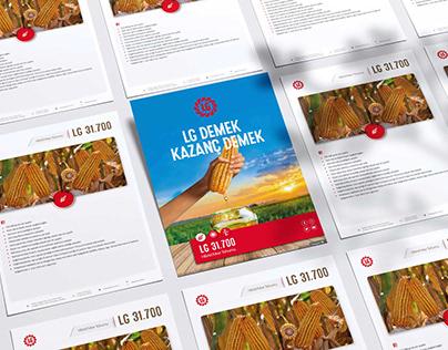 Brochure&Magazine