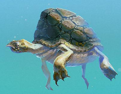 Turtleortoise?
