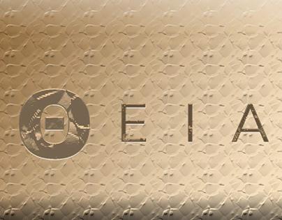 Case Study: Creating Jewelry Logo