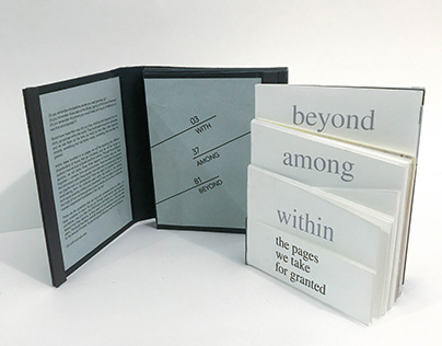 The Pages We Take For Granted (4-in-1 Book Design)