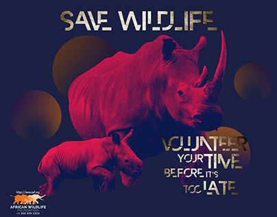Save Wildlife