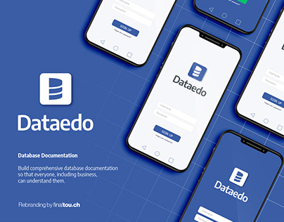 Dataedo - database software - rebranding