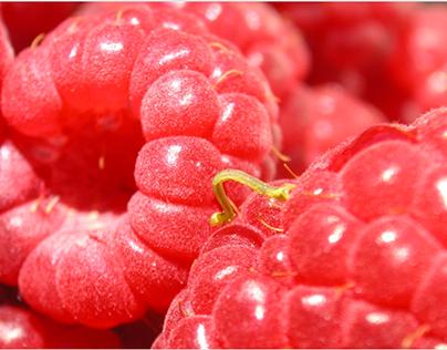 Slider's Fruit