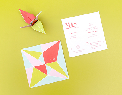 Folding a Crane Bird with Ellie