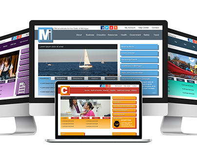 State of Michigan Website Re-Design