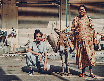 Balance between the donkeys and humans in Lock Down