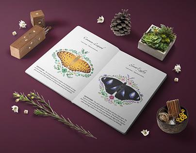 Jim's Jungle Retreat - Butterfly Brochure