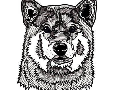 Shiba Inu - Black & Whte dog head