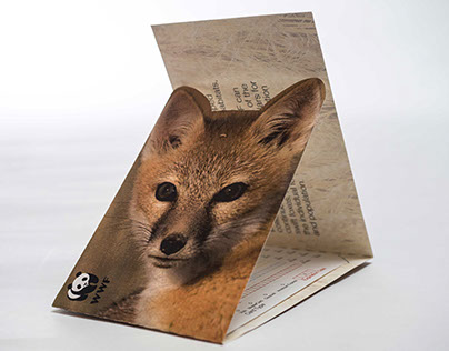 WWF Brochure Project (Swift Fox)