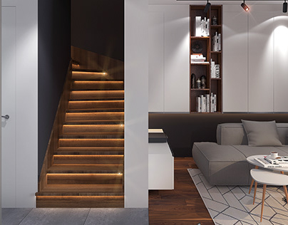 Private Town House Project in Poland