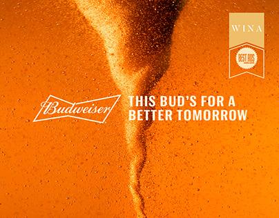 Budweiser - Renewable Energy