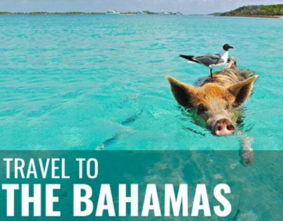 travel to: The Bahamas