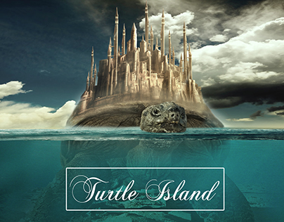 Turtle Island / Panda 3 D