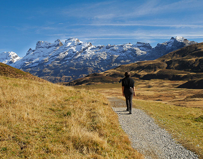 Swiss Landscapes
