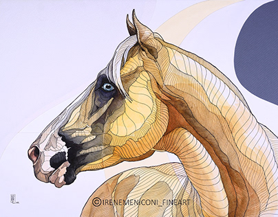 Equus series