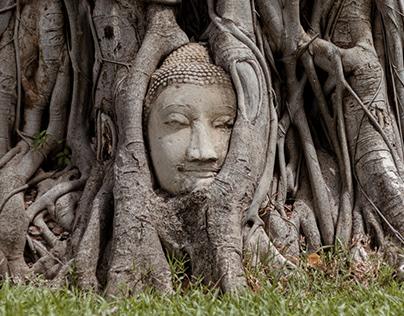 Wat Maha That, Ayutthaya