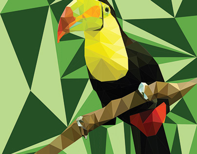 Low poly Toucan