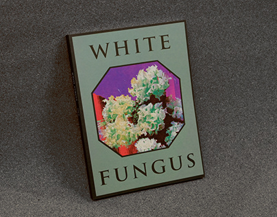 White Fungus Art Magazine issue16