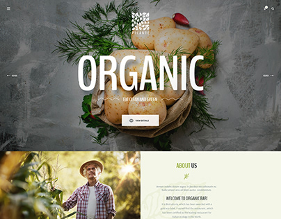 Picante - Restaurant & Food WordPress Theme