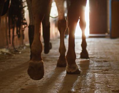 Horsebills Television Commercial