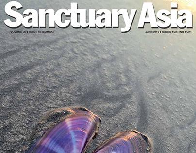 Sanctuary Asia June 2019