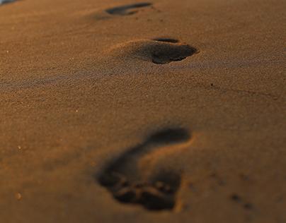 beach stories