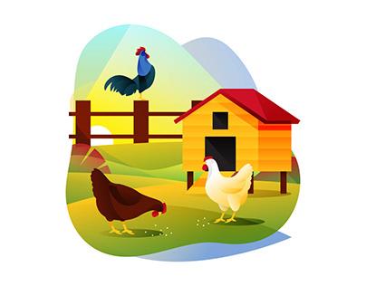 Chicken Farm Illustration