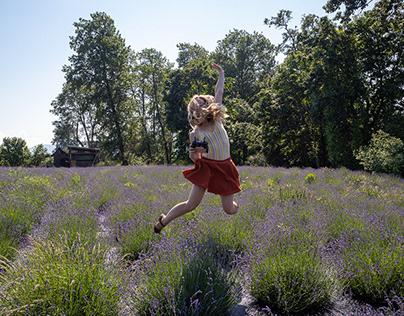 Lavender Festival Promotion
