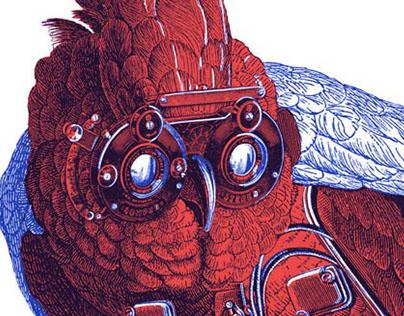Illustration for Rara Avis Fanzine
