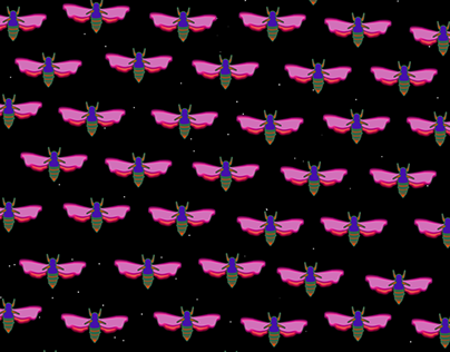 cicadas for projection mapping