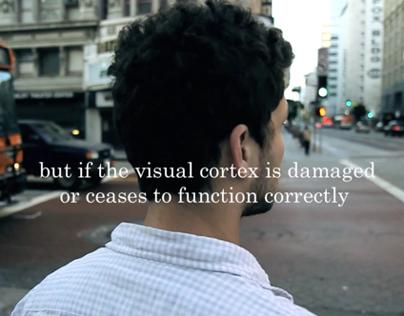 Motion Blindness
