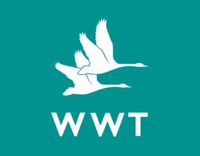WWT (Wildfowl & Wetlands Trust)