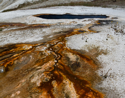 Yellowstone Bacteria Mats