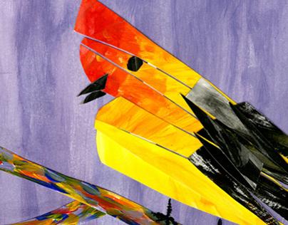 Season Of Birds