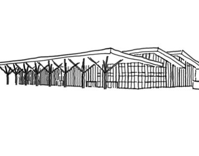 Aeroporto em Canela